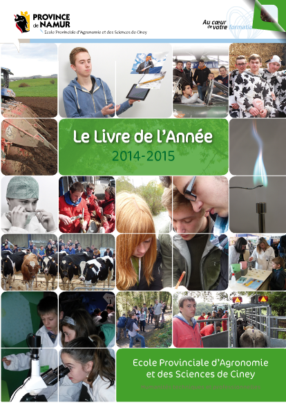 LDA2015_FlippingBook